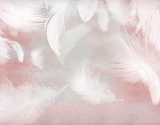 Фотообои Белые перья на розовом фоне 29283