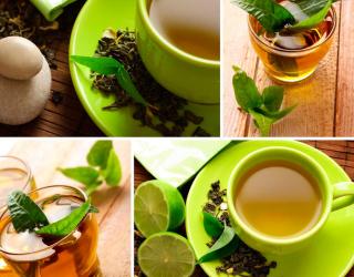 Фотообои Зелёный чай 8625