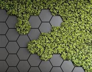 Фотообои Шестиугольники с зеленью 28506