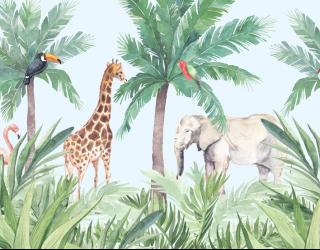 Фотообои Тропические детские джунгли 22552