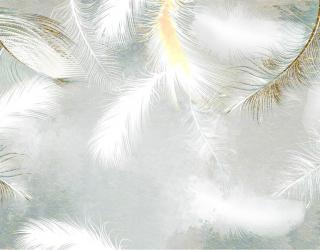 Фотообои Белые перья с золотом 29229