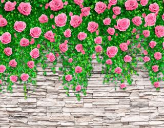 Фотообои Каменная стена с розами 20110