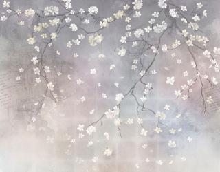 Фотообои Ветви сакуры на сером 19951