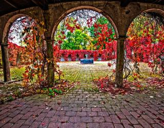Фотообои Арки в саду 7102