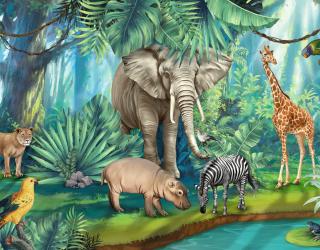 Фотообои Яркие африканские животные 23975