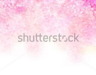 Фотообои Цветы 216846619