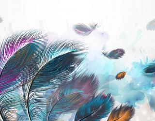 Фотообои Разноцветные перья 29110