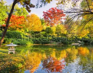 Фотообои Озеро 163706627