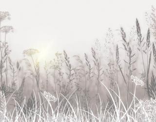 Фотообои Сухоцветы в постельных тонах 24019