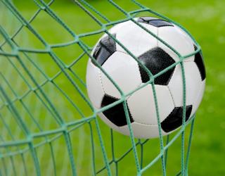 Фотообои Мяч в воротах 22627