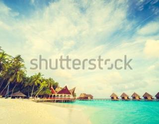 Фотообои Пляж, небо, пальмы 455969233