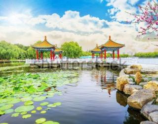 Фотообои Китайские беседки  456016585