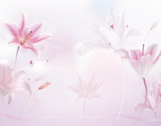 Фотообои Розовые лилии 22480