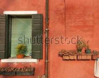 Фотообои Окно, цветы 448116520
