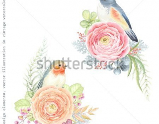 Фотообои Цветы, птицы 424291270