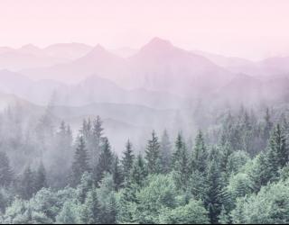 Фотообои Лес с розовыми горами 28773