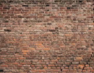 Фотообои Коричневая кирпичная стена 20241