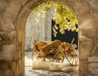 Фотообои Повозка с сеном 1282