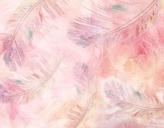Фотообои Перья розовые 28026