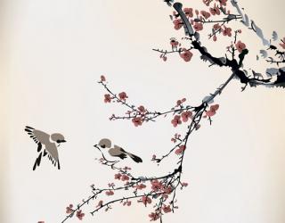 Фотообои Векторная ветка сакуры 14643