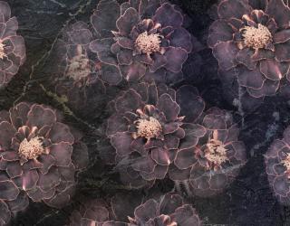 Фотообои Тёмные цветы 26188