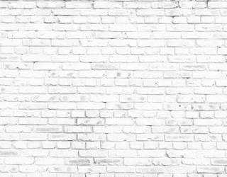 Фотообои Белая кирпичная стена 20249