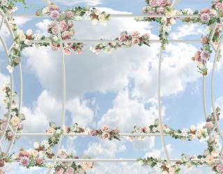 Фотообои Цветочные фотообои для потолка 22529