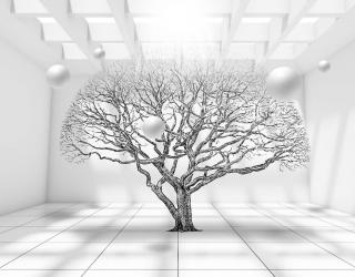 Фотошпалери Дерево в кімнаті 20097
