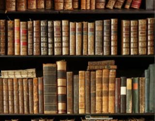 Фотообои Книжные полки 24890