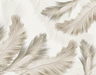 Фотообои Бежевые перья 29109