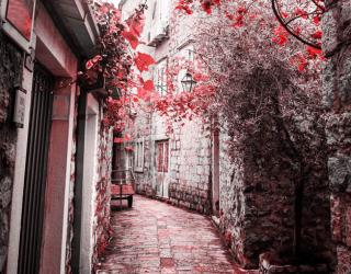 Фотообои Осенняя улочка 23352