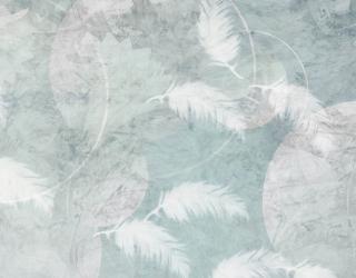 Фотообои Нежные перья на голубом фоне 28597