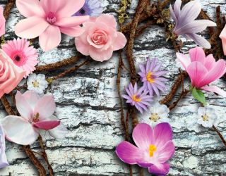 Фотообои Цветы на фоне стены 18611