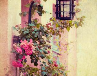 Фотообои Фонарь и цветы 7396