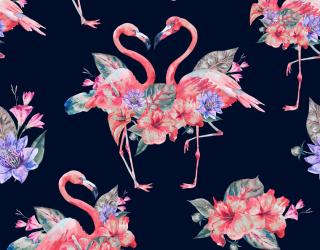 Фотообои розовые фламинго на темном фоне 21401