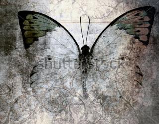 Фотообои Бабочки 233816476