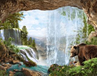 Фотообои Медведь на водопое 22395
