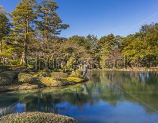 Фотообои Природа 456065878