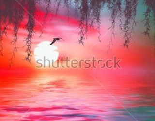 Фотообои Море 378052702