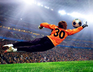 Фотообои Вратарь ловит мяч 3596