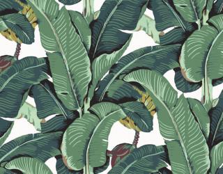 Фотообои Паттерн из банановых листьев 26420