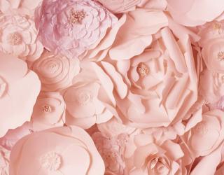 3д фотообои 3д бумажные цветы 22065