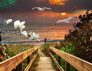 Фотообои Лестница к море 23183