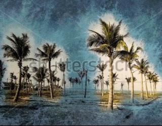 Фотообои Пальмы 455879164