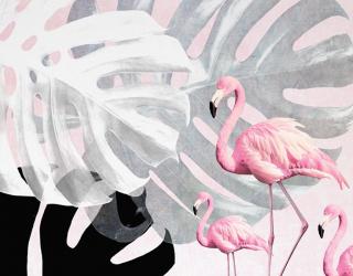 Фотообои Фламинго и Монстера 22256