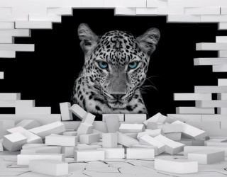 3д фотообои Леопард 19817