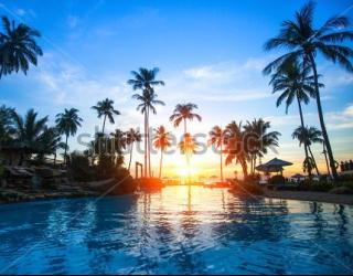 Фотообои Пальмы, солнце, море 148143299