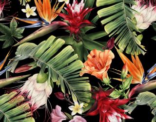Фотообои Тропические листья на черном 22838