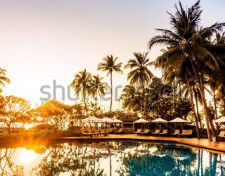 Фотообои Пальмы, закат 412353697