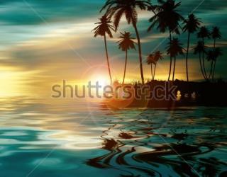Фотообои Пальмы, солнце 394598881